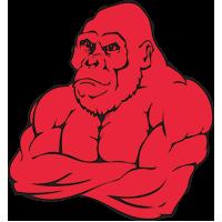 sbg-gorilla-bg-red